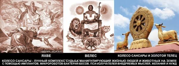 http://forumupload.ru/uploads/0012/d6/0d/903/t887803.jpg