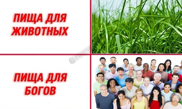 http://forumupload.ru/uploads/0012/d6/0d/903/t934612.png
