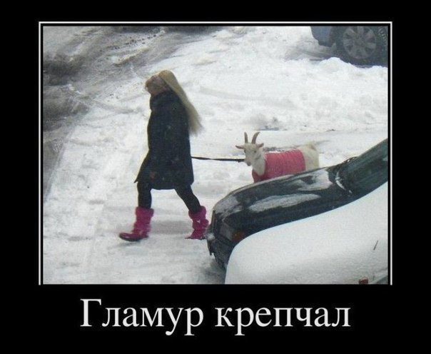 https://forumupload.ru/uploads/0013/1f/fe/273/494827.jpg