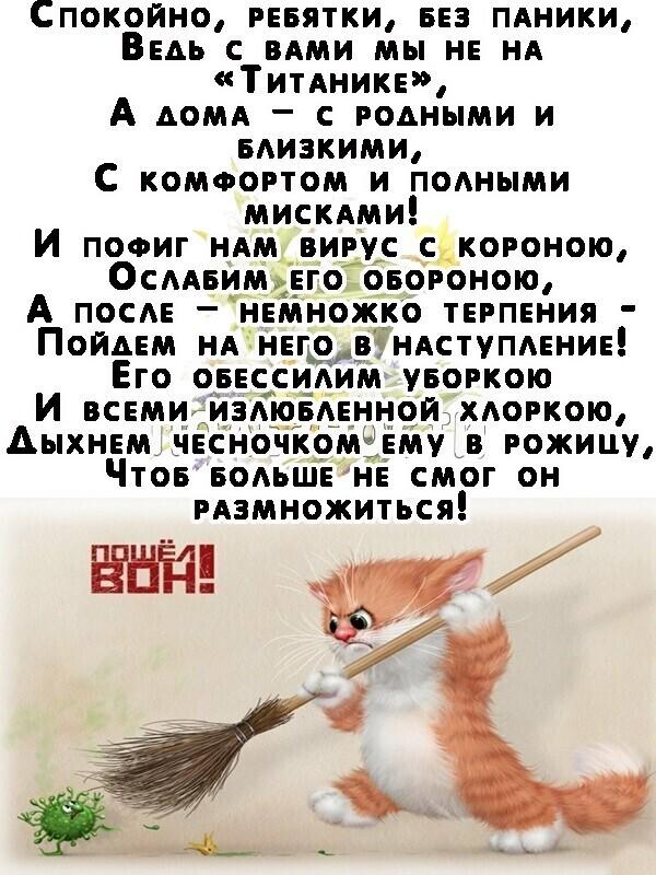 http://forumupload.ru/uploads/0013/1f/fe/409/t827437.jpg