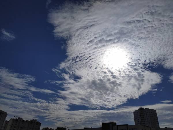 http://forumupload.ru/uploads/0013/1f/fe/411/t216272.jpg