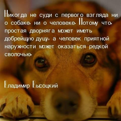 http://forumupload.ru/uploads/0013/1f/fe/411/t421868.jpg