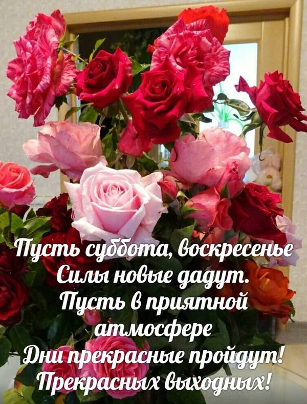 http://forumupload.ru/uploads/0013/1f/fe/411/t493542.jpg