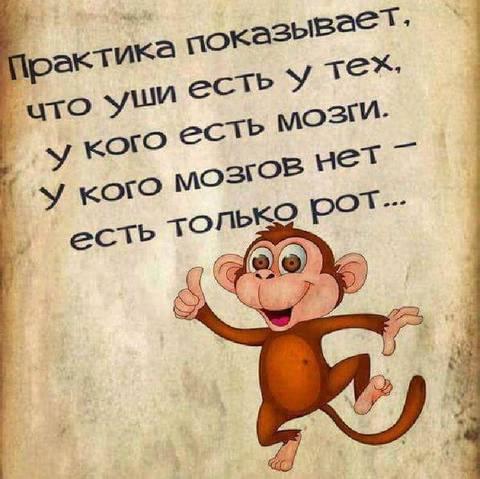 http://forumupload.ru/uploads/0013/1f/fe/411/t619846.jpg