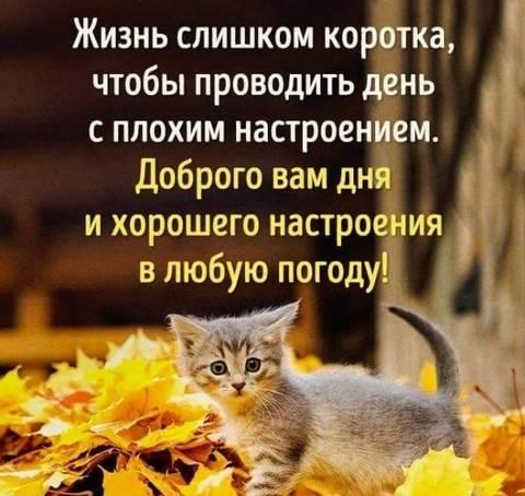 http://forumupload.ru/uploads/0013/1f/fe/411/t675093.jpg