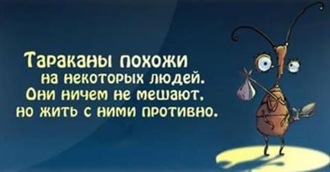 http://forumupload.ru/uploads/0013/1f/fe/411/t730931.jpg
