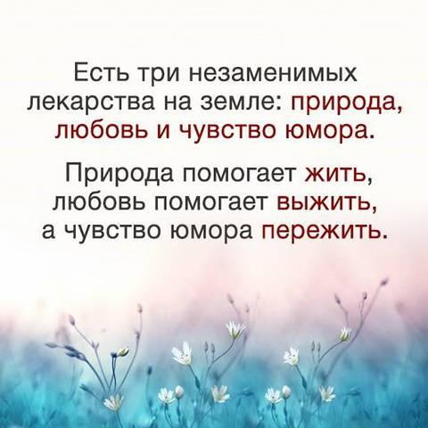 http://forumupload.ru/uploads/0013/1f/fe/411/t829289.jpg