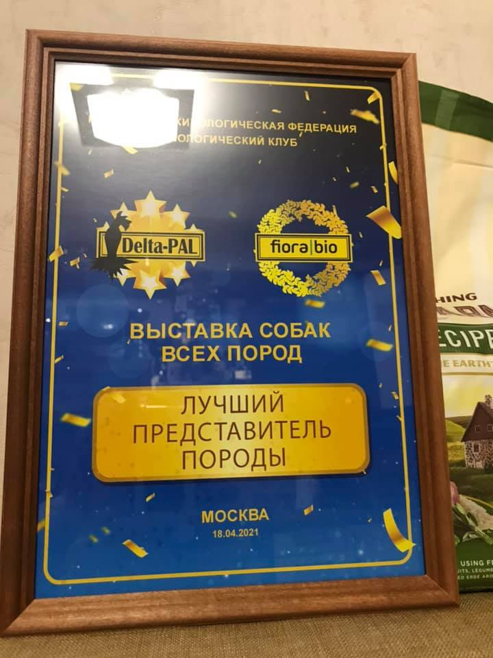 http://forumupload.ru/uploads/0013/26/e2/64/142868.jpg