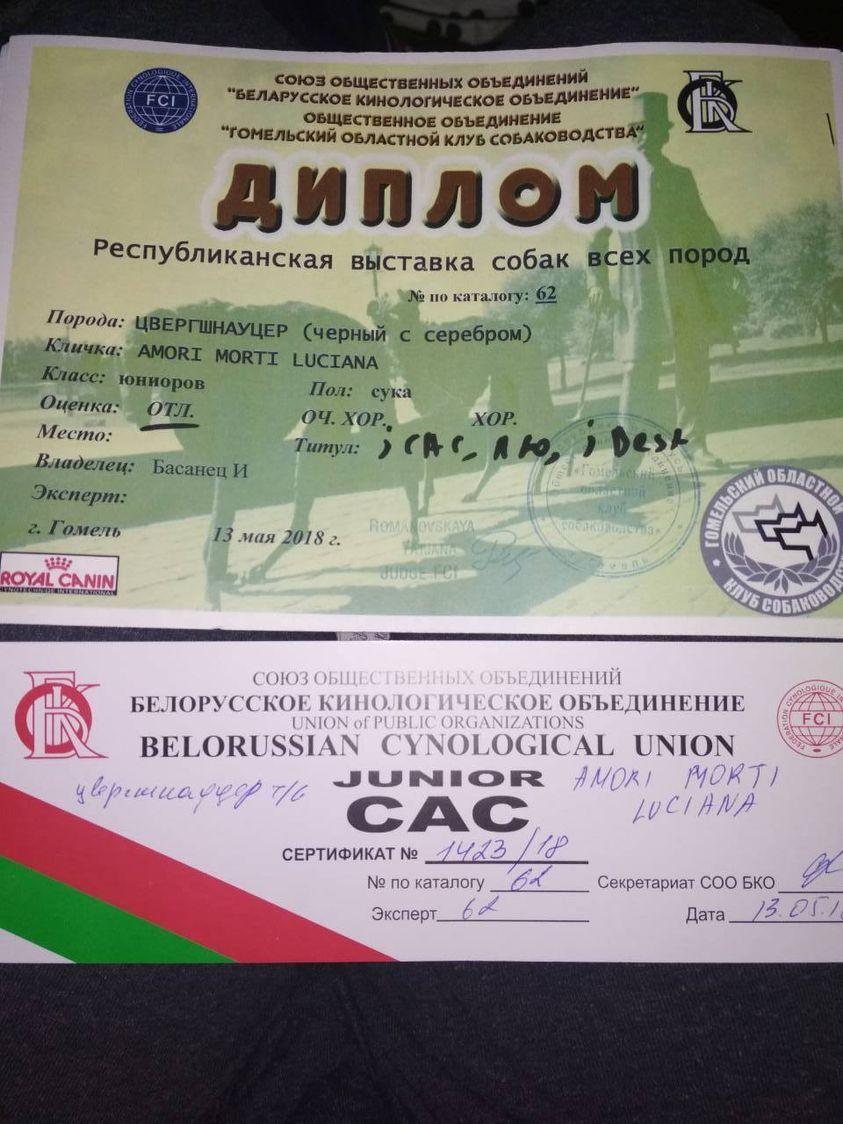 http://forumupload.ru/uploads/0013/26/e2/64/15174.jpg