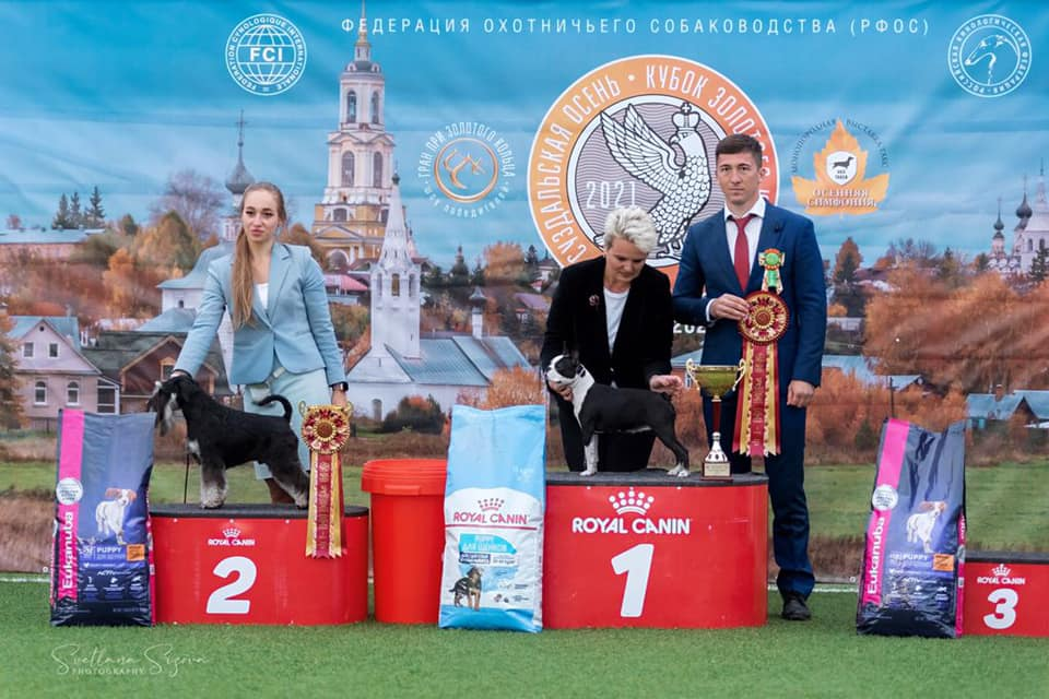 http://forumupload.ru/uploads/0013/26/e2/64/293949.jpg