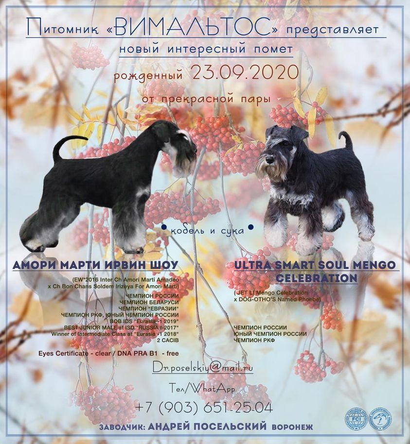 http://forumupload.ru/uploads/0013/26/e2/64/297642.jpg