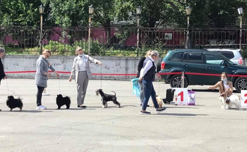 http://forumupload.ru/uploads/0013/26/e2/64/333191.jpg
