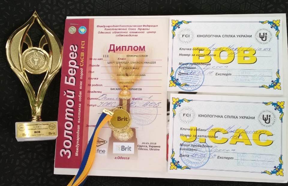 http://forumupload.ru/uploads/0013/26/e2/64/372388.jpg