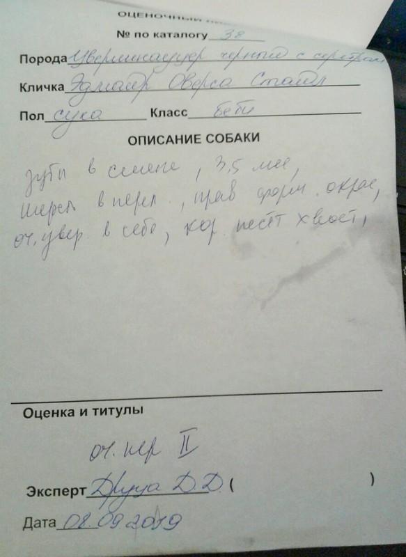 http://forumupload.ru/uploads/0013/26/e2/64/405446.jpg