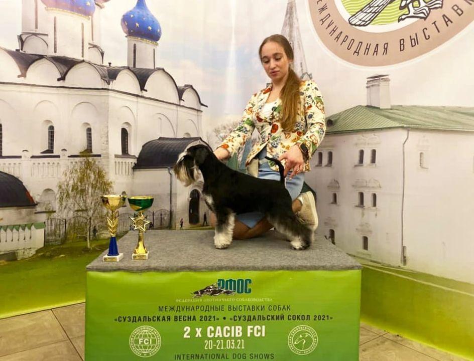 https://forumupload.ru/uploads/0013/26/e2/64/407723.jpg