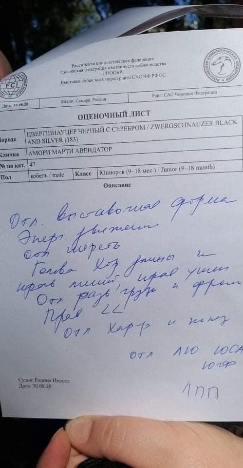 http://forumupload.ru/uploads/0013/26/e2/64/418441.jpg