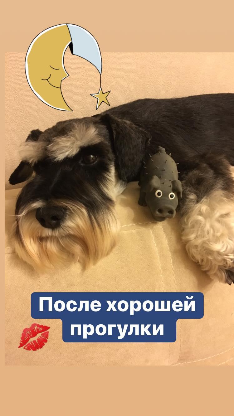 http://forumupload.ru/uploads/0013/26/e2/64/428035.jpg
