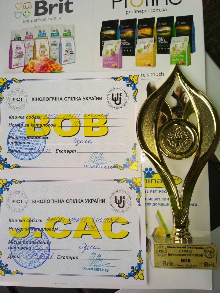 http://forumupload.ru/uploads/0013/26/e2/64/489495.jpg