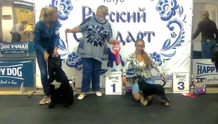 http://forumupload.ru/uploads/0013/26/e2/64/53683.jpg
