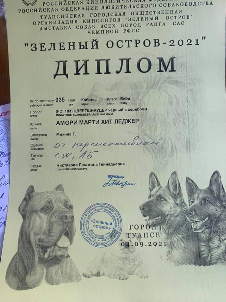 http://forumupload.ru/uploads/0013/26/e2/64/669920.jpg