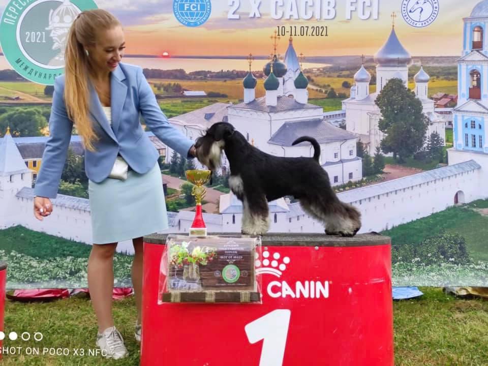 http://forumupload.ru/uploads/0013/26/e2/64/674878.jpg