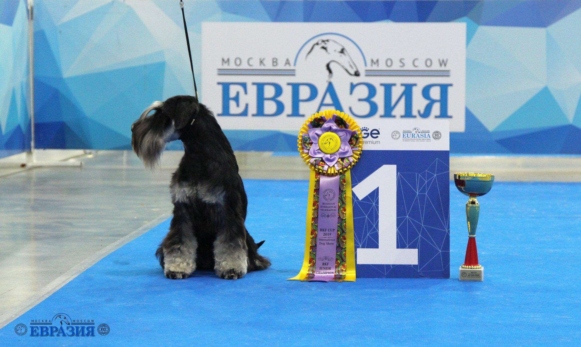 http://forumupload.ru/uploads/0013/26/e2/64/690014.jpg
