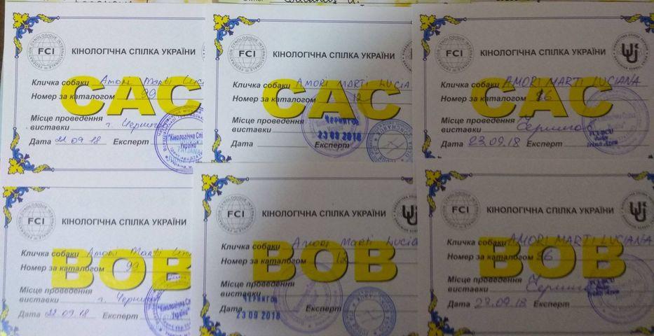 http://forumupload.ru/uploads/0013/26/e2/64/694767.jpg