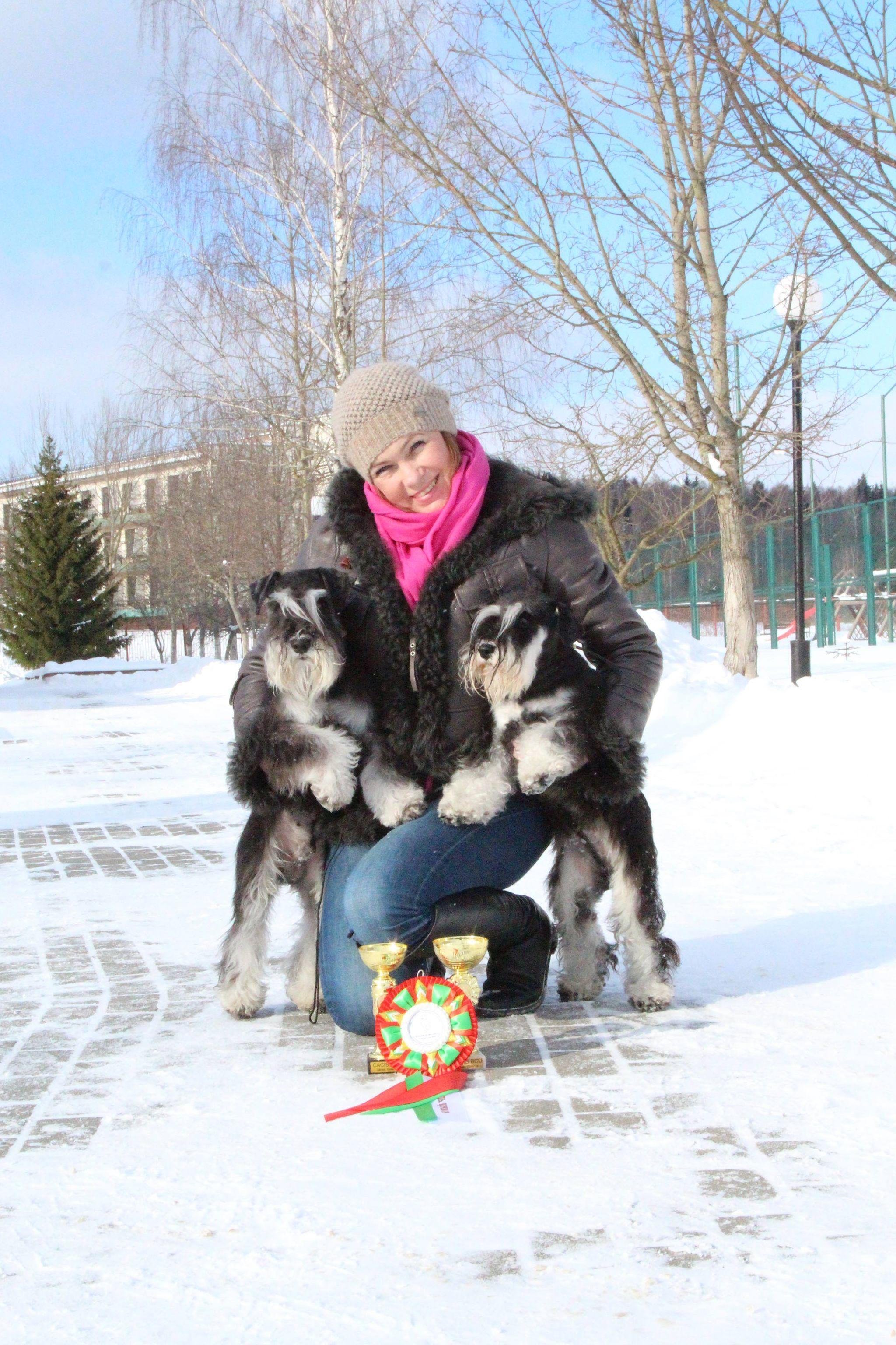 http://forumupload.ru/uploads/0013/26/e2/64/697466.jpg