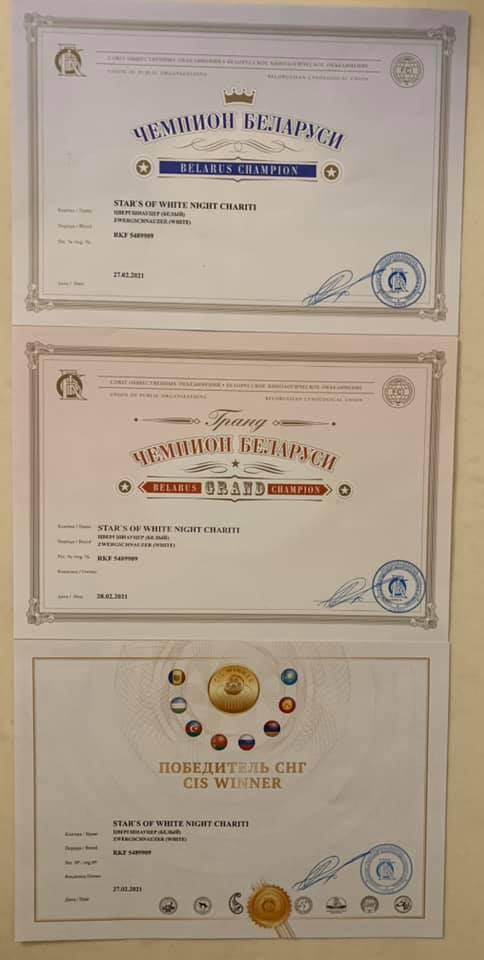 http://forumupload.ru/uploads/0013/26/e2/64/726937.jpg