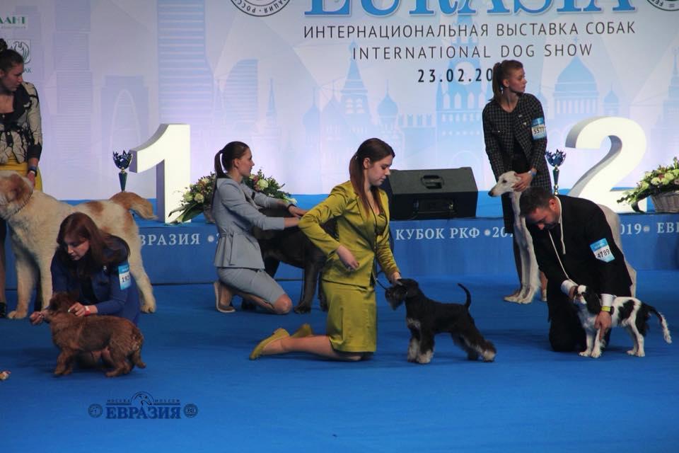 http://forumupload.ru/uploads/0013/26/e2/64/732759.jpg