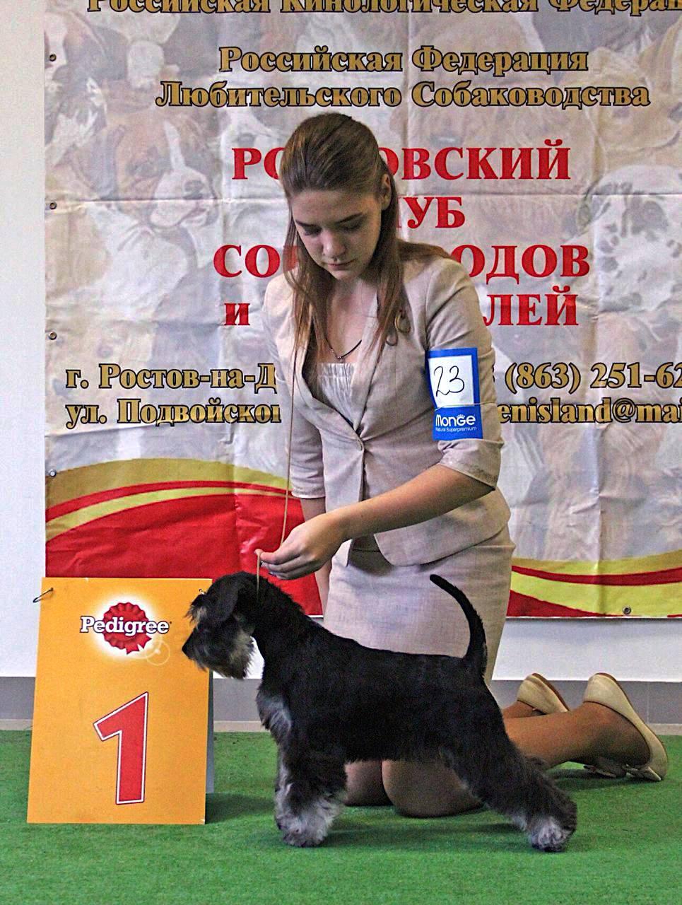 http://forumupload.ru/uploads/0013/26/e2/64/749576.jpg