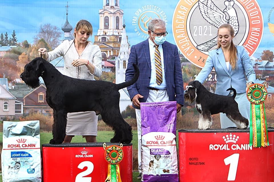 http://forumupload.ru/uploads/0013/26/e2/64/866348.jpg