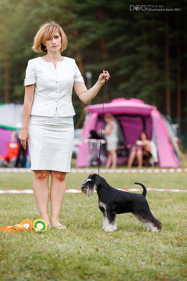 http://forumupload.ru/uploads/0013/26/e2/64/94036.jpg