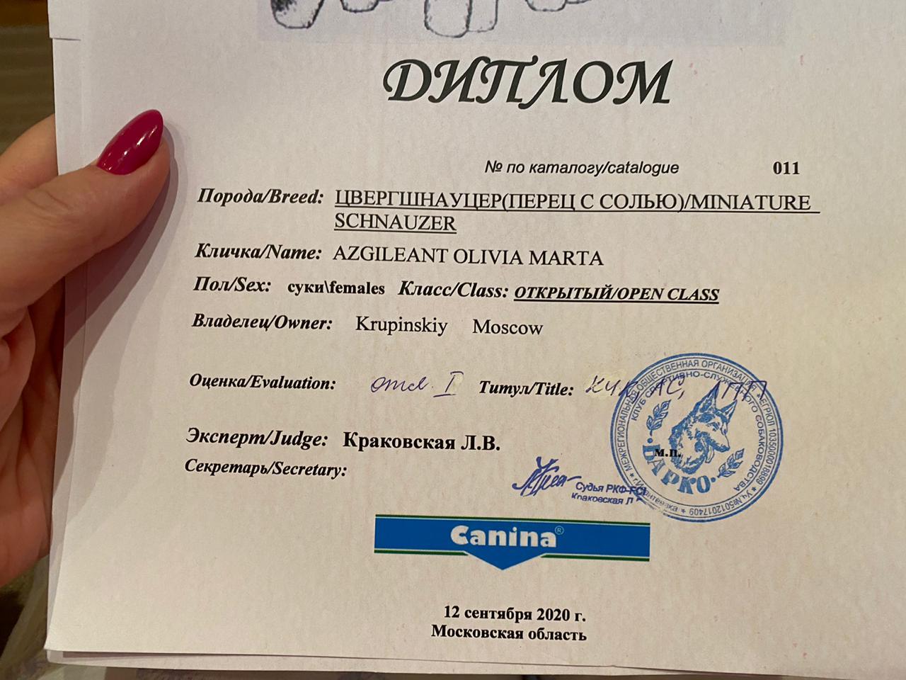 http://forumupload.ru/uploads/0013/26/e2/64/965927.jpg