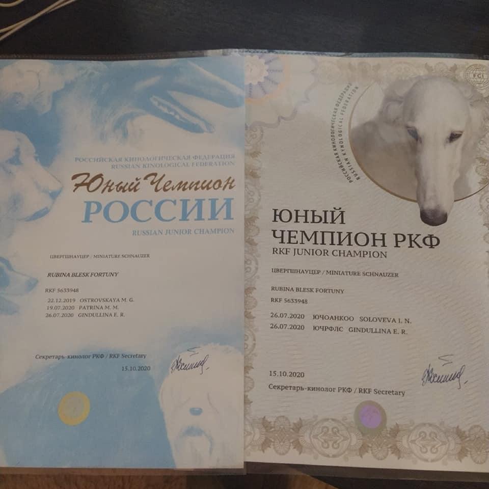 http://forumupload.ru/uploads/0013/26/e2/64/985236.jpg