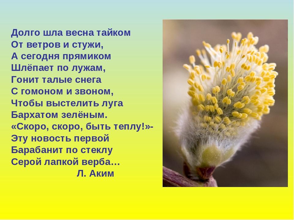 http://forumupload.ru/uploads/0013/8b/ae/260/428511.jpg