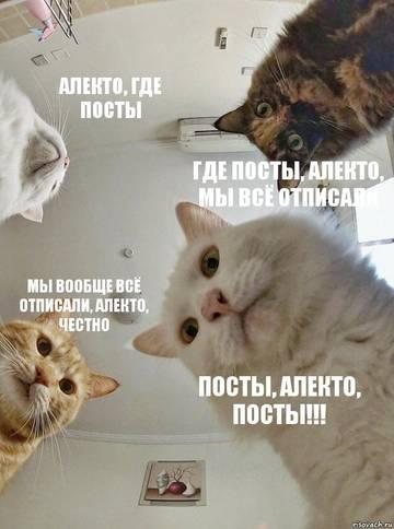 http://forumupload.ru/uploads/0014/6e/c5/515/t895171.jpg