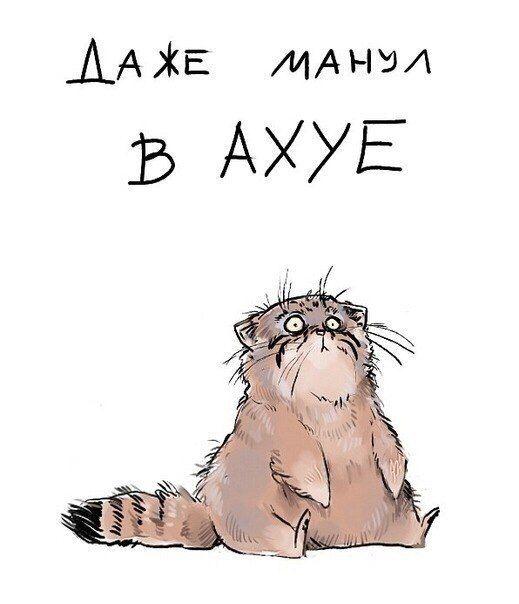 http://forumupload.ru/uploads/0014/6e/c5/603/273408.jpg