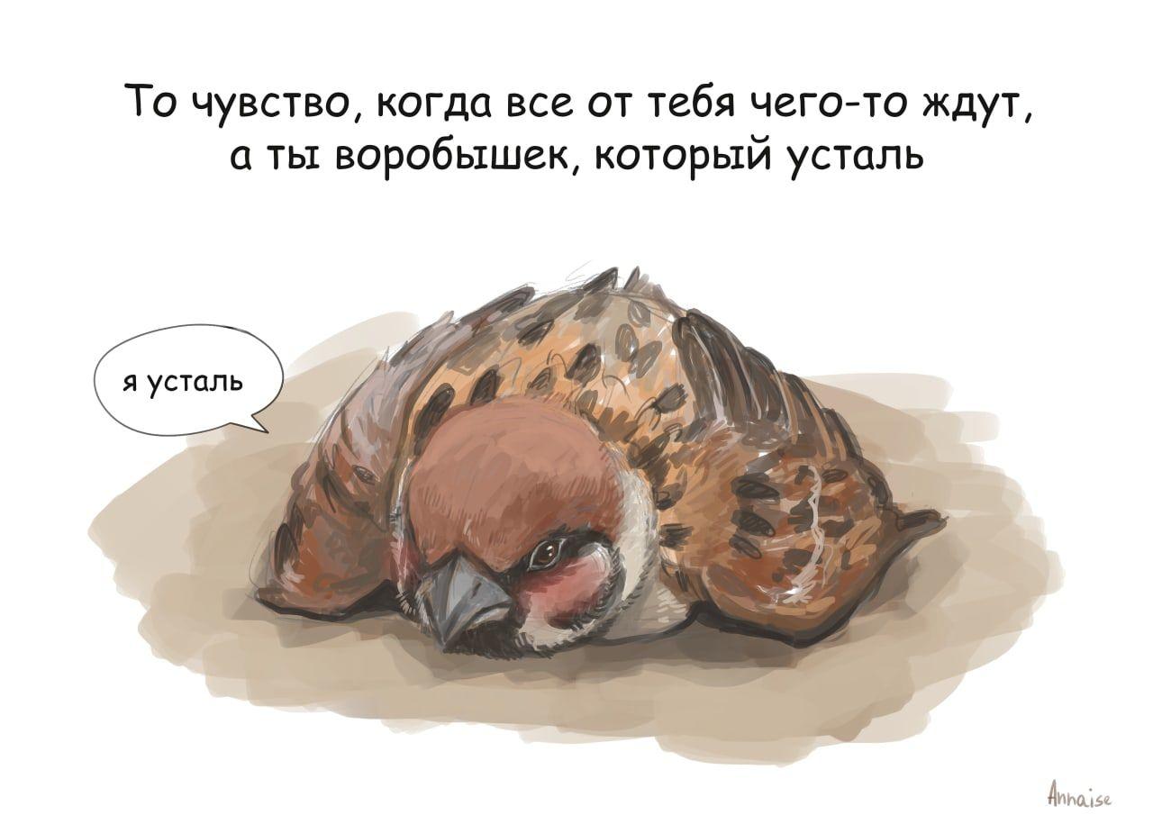 http://forumupload.ru/uploads/0014/6e/c5/603/544981.jpg