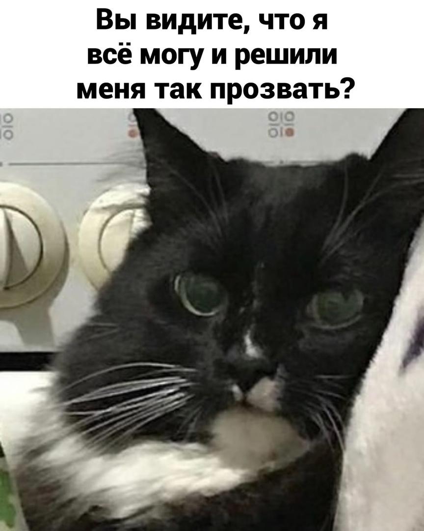 http://forumupload.ru/uploads/0014/6e/c5/641/102329.jpg