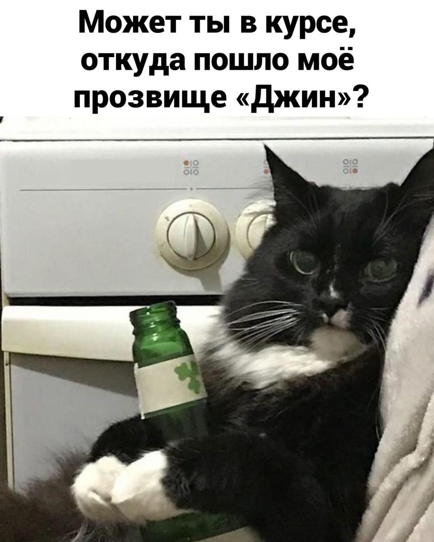 http://forumupload.ru/uploads/0014/6e/c5/641/728981.jpg