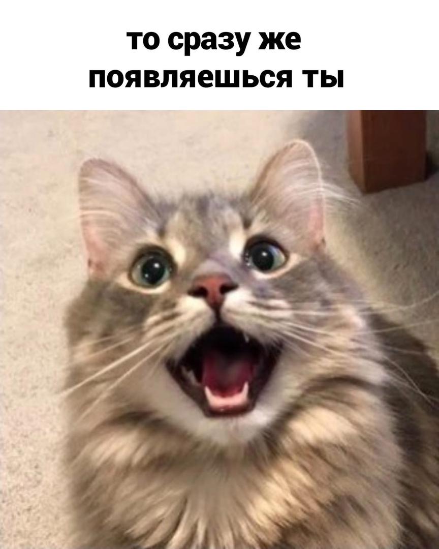 http://forumupload.ru/uploads/0014/6e/c5/641/880004.jpg