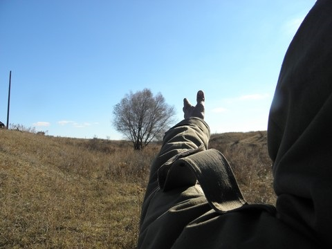 http://forumupload.ru/uploads/0014/75/e6/2/784586.jpg