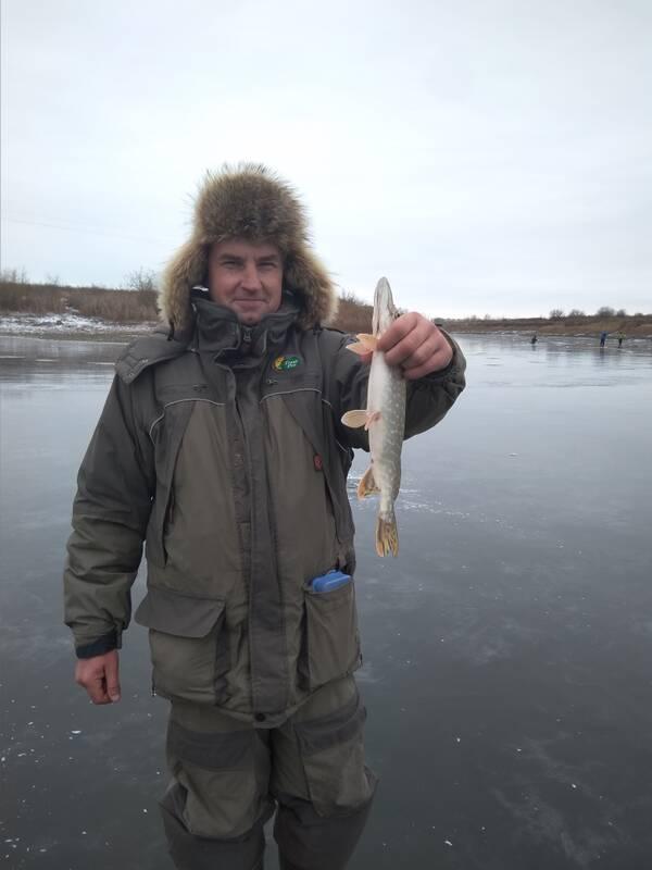 http://forumupload.ru/uploads/0017/28/55/905/t118148.jpg