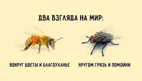 http://forumupload.ru/uploads/0017/a0/a2/14/t229170.jpg