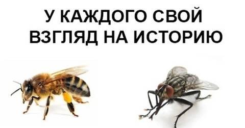 http://forumupload.ru/uploads/0017/a0/a2/14/t39946.jpg
