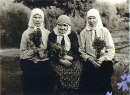 http://forumupload.ru/uploads/0017/a0/a2/153/192857.png