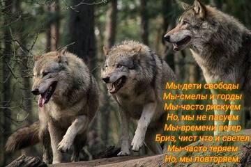 https://forumupload.ru/uploads/0017/aa/81/281/t465119.jpg