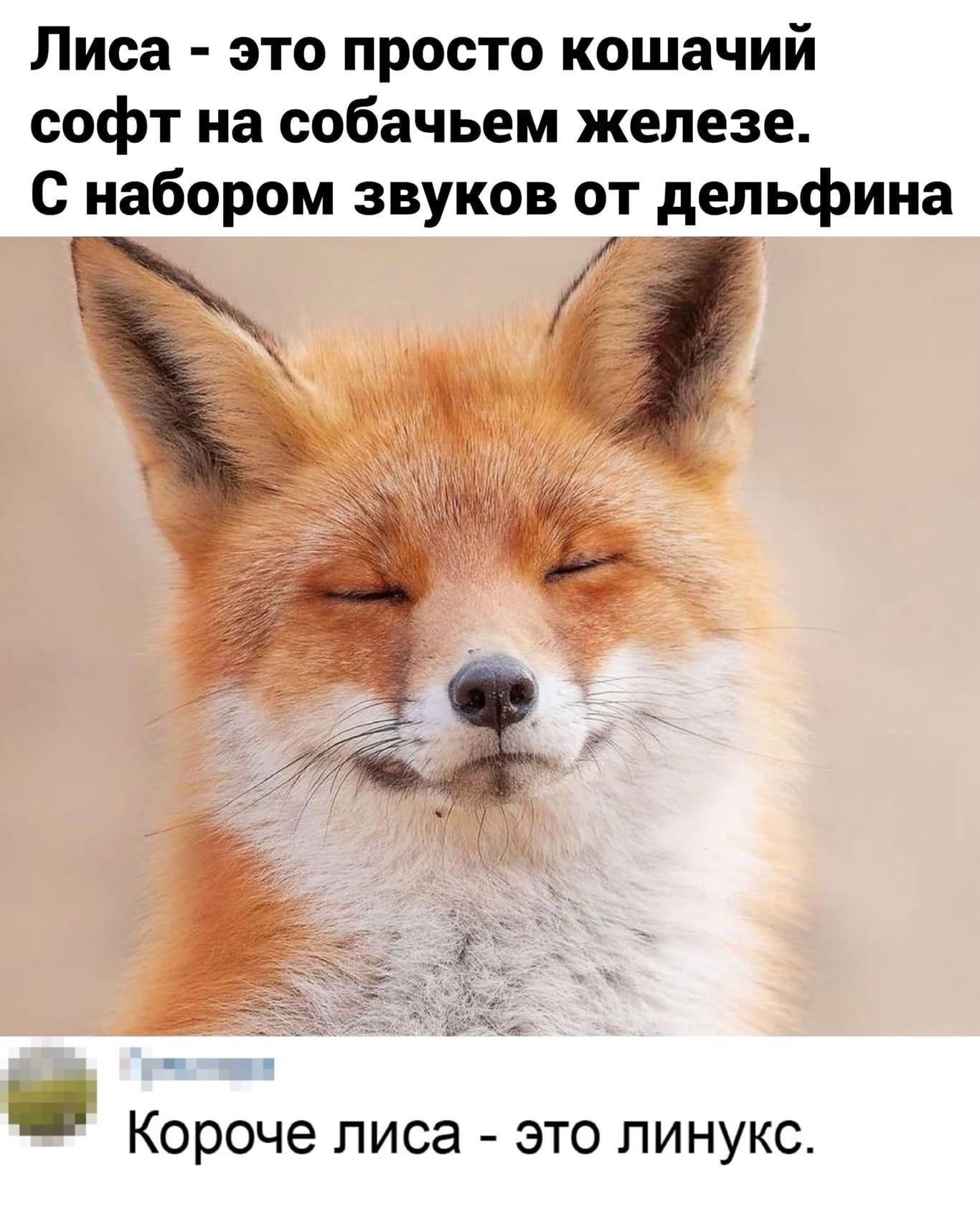 http://forumupload.ru/uploads/0017/aa/81/299/839781.jpg