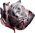 http://forumupload.ru/uploads/0017/ac/85/2/t23771.png